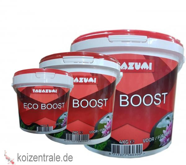 ECO BOOST | Alternative gegen Fadenalgen
